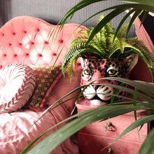 Load image into Gallery viewer, Italian ceramic planter in the shape of a leopard head place on a bedside table with fern plant inside to show use and styling