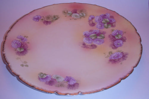 Bavarian China Hand Painted Plate