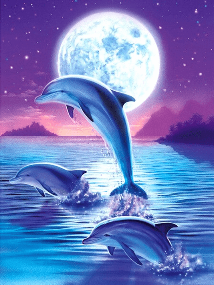 Dolphin and Blue Moon
