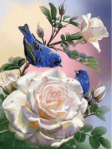 Rose and Blue Birds