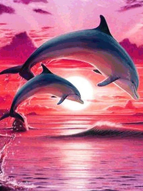 DOLPHIN JUMPING SUNSET