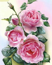 Load image into Gallery viewer, Pink Rose