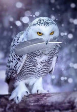 Load image into Gallery viewer, Arctic Owl