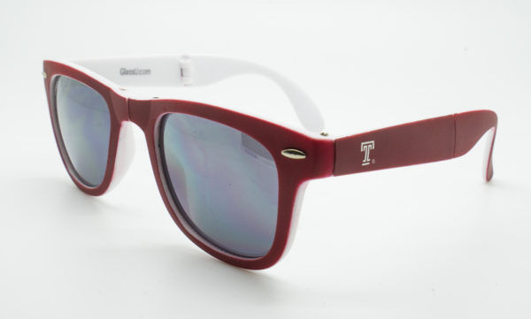 Temple Sunglasses