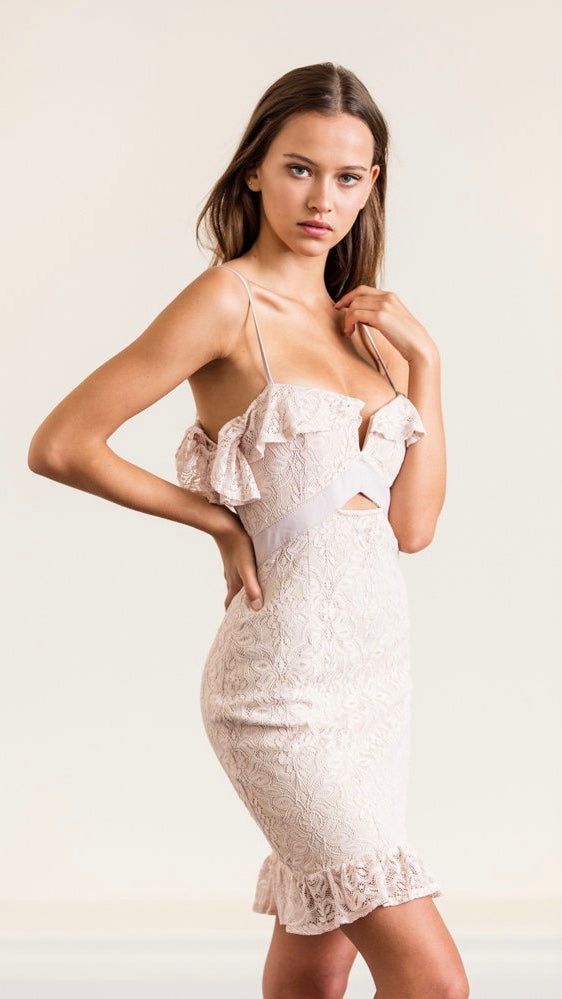 Nude Lace Mini Dress