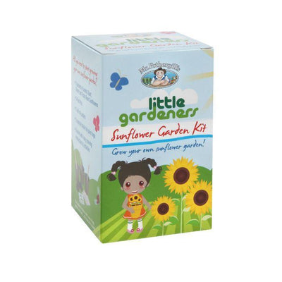 Sunflower Garden Kit Cube - Eden Gardens