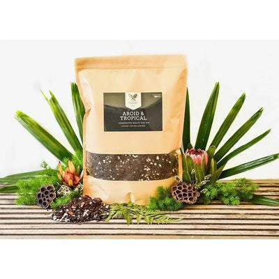 AROID & TROPICAL MIX 1.5KG - Eden Gardens