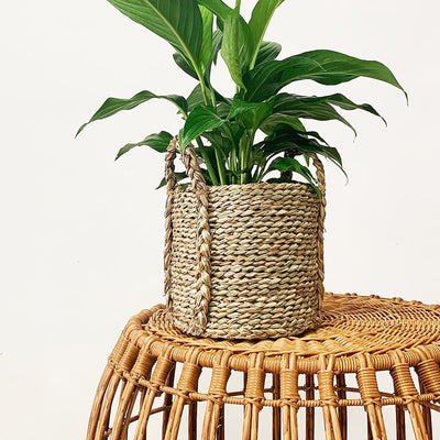 Arlo Basket Natural - Eden Gardens