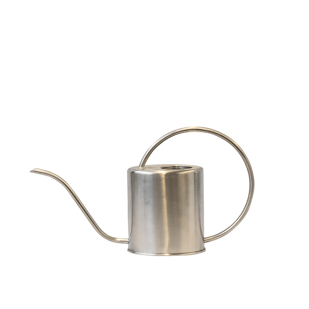Stainless Watering Can - Eden Gardens