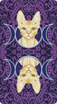 Tarot of Pagan Cats Deck (Lo Scarabeo)