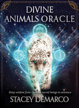 Load image into Gallery viewer, Divine Animals Oracle Cards Deck & Book (Stacey Demarco)