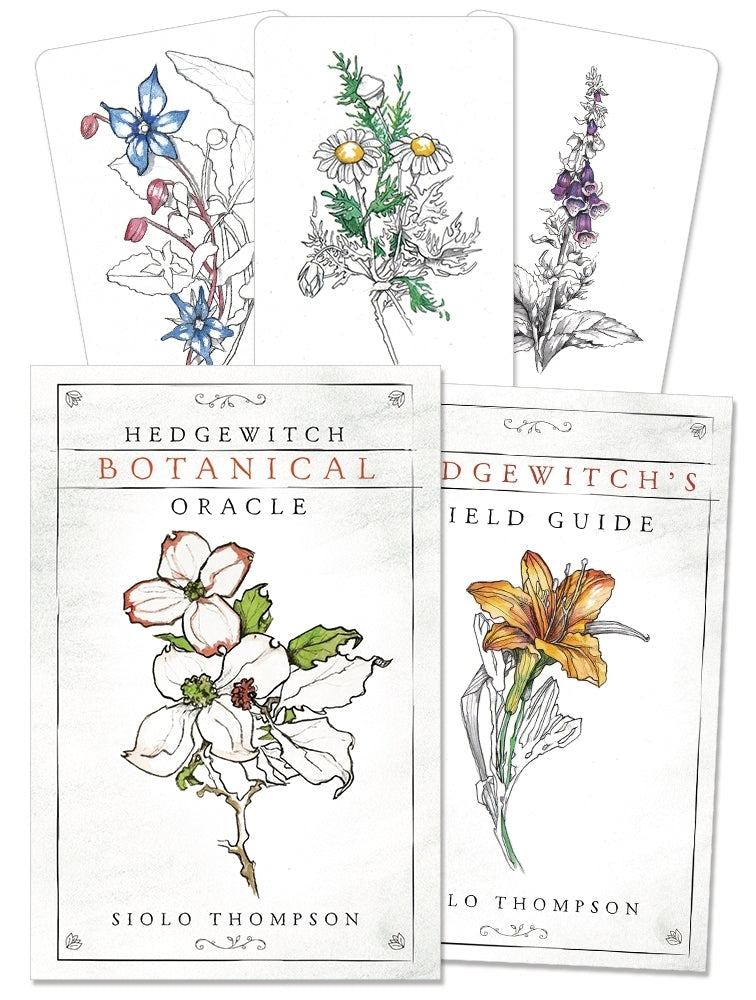 Hedgewitch Botanical Oracle Cards Deck (Siolo Thompson)