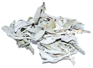 White Sage Loose Dried (3 Sizes)