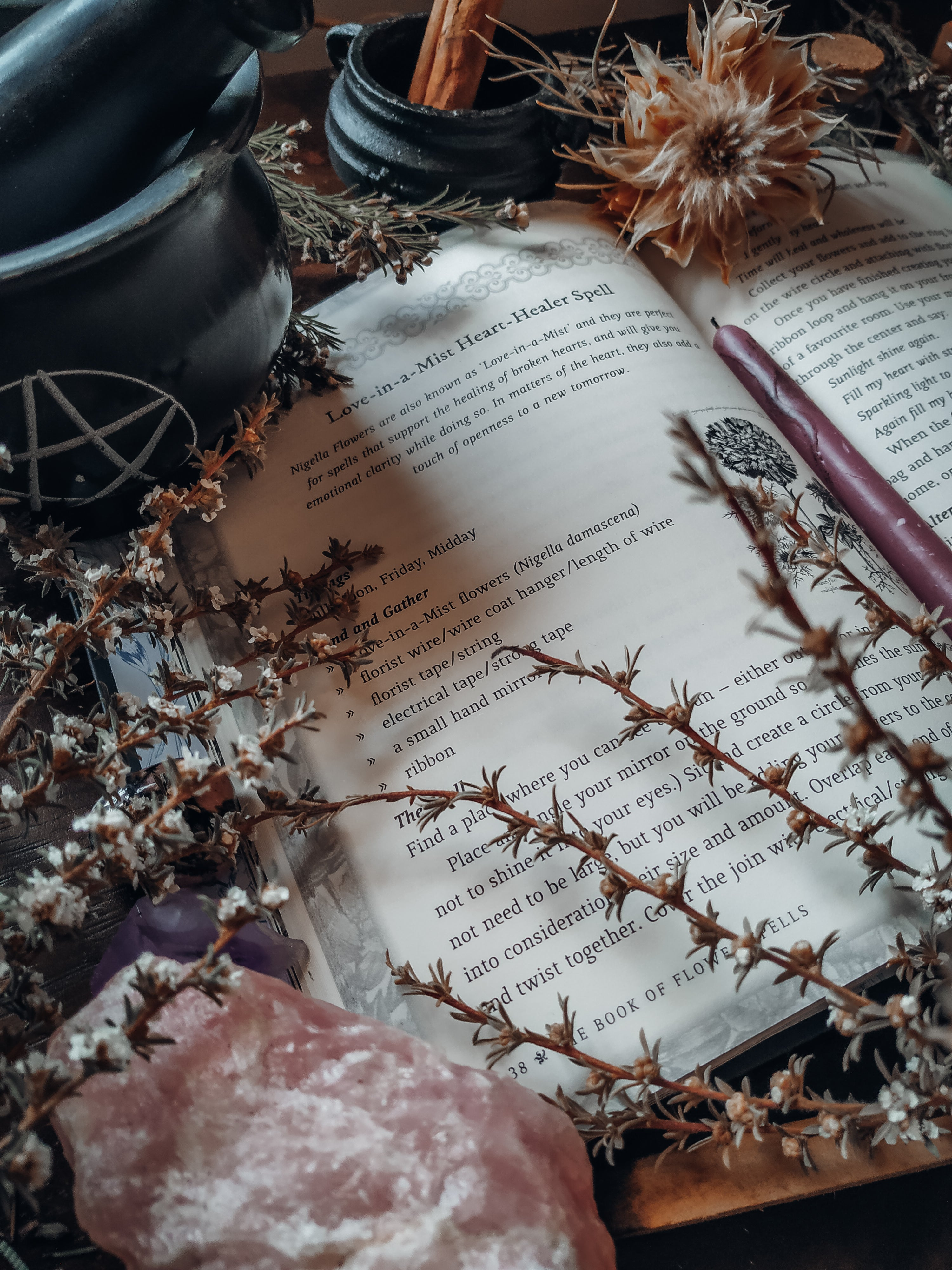 The Book of Flower Spells (Cheralyn Darcey)