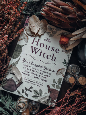The House Witch (Arin Murphy-Hisock)