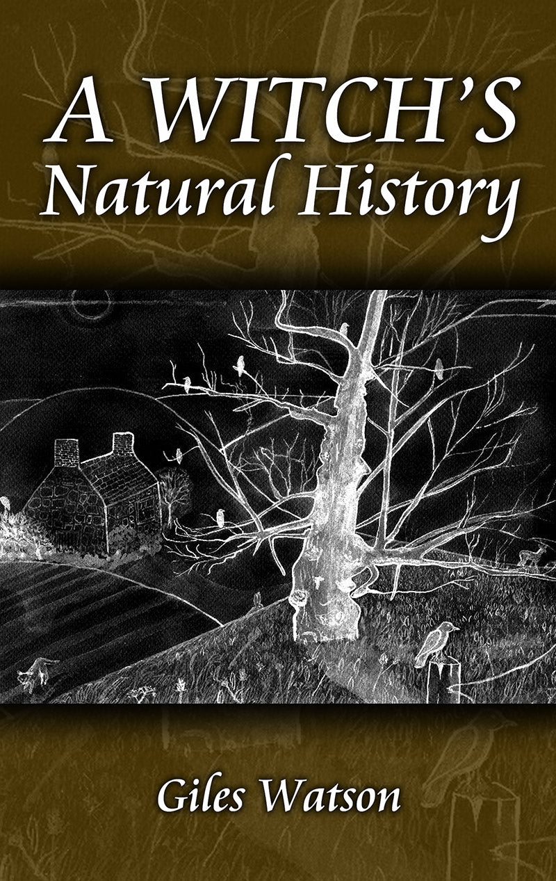 A Witch's Natural History (Giles Watson)