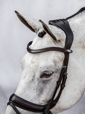 PS of Sweden Paladin black bridle