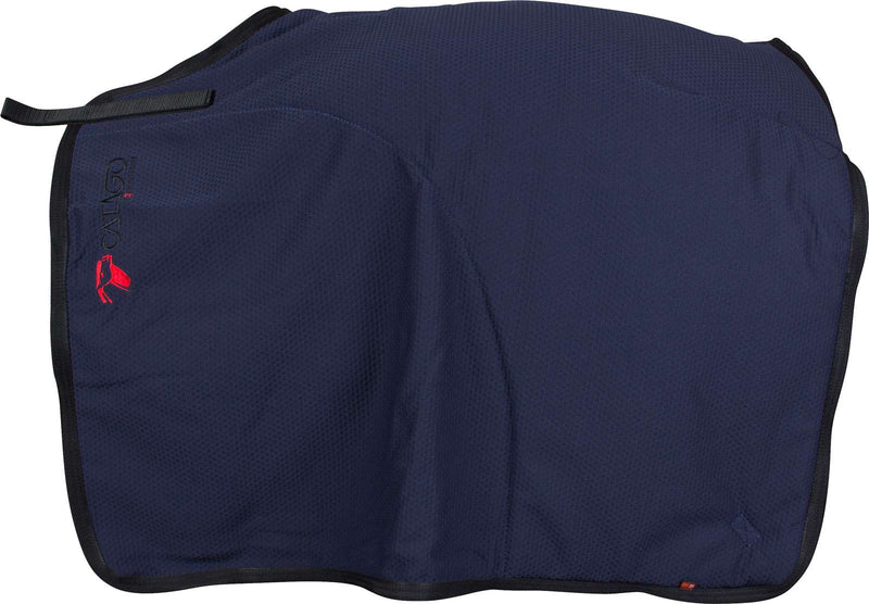 Catago Fir Tech Navy quarter sheet