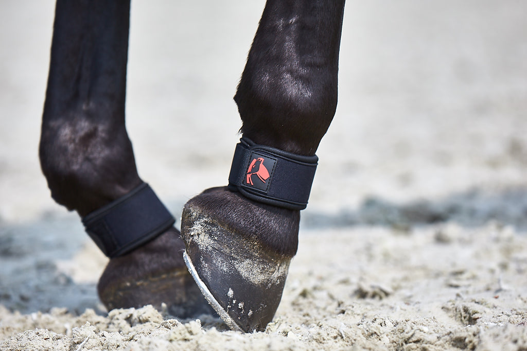 Catago FIR tech pastern wraps