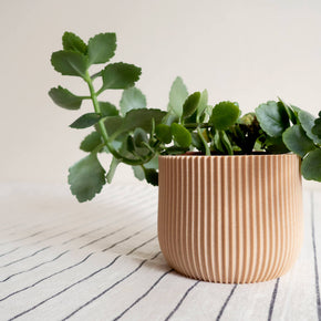 Lotus Planter | Curious Makers