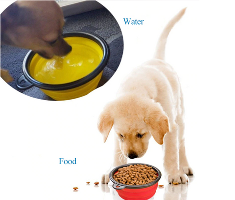 Pet Water and Food Bottle