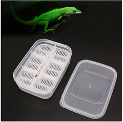 Plastic Reptiles Eggs Incubator Tray - Animax Pet Shop