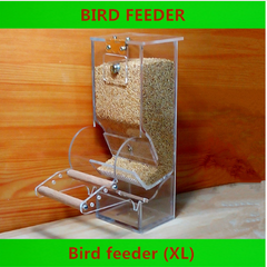 Bird Feeder - Animax Pet Shop