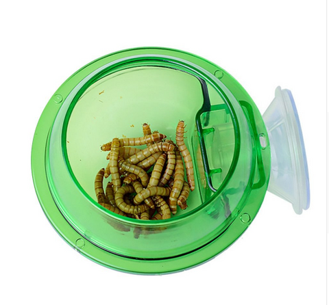 Suction Cup Reptile Feeder - Animax Pet Shop