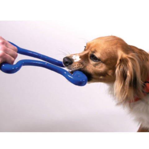 Planet Dog Orbee Tuff Tug of War - Animax Pet Shop