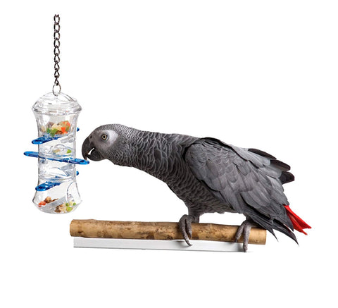 Bird Treat Holder - Animax Pet Shop