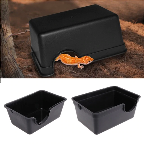 Reptile Box Hiding Case - Animax Pet Shop