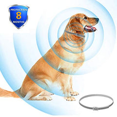 Anti Flea and Tick Pet Collar - Animax Pet Shop
