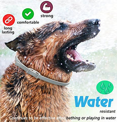 Anti Flea and Tick Pet Collar