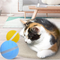 Motion Ball For Pets - Animax Pet Shop