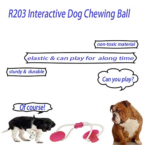 Interactive dog chew bite ball toy - Animax Pet Shop