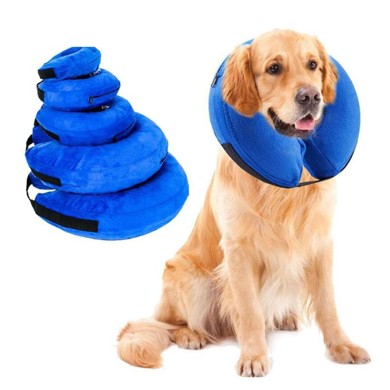 Inflatable Pet Collar For After Surgery Care - Animax Pet Shop