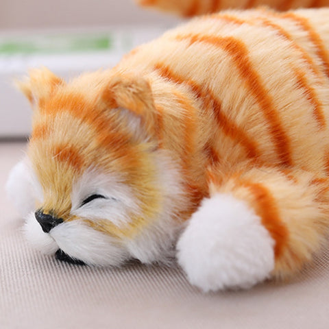 Hilarious and Adorable Electric Laughing and Rolling Cat Toy - Animax Pet Shop