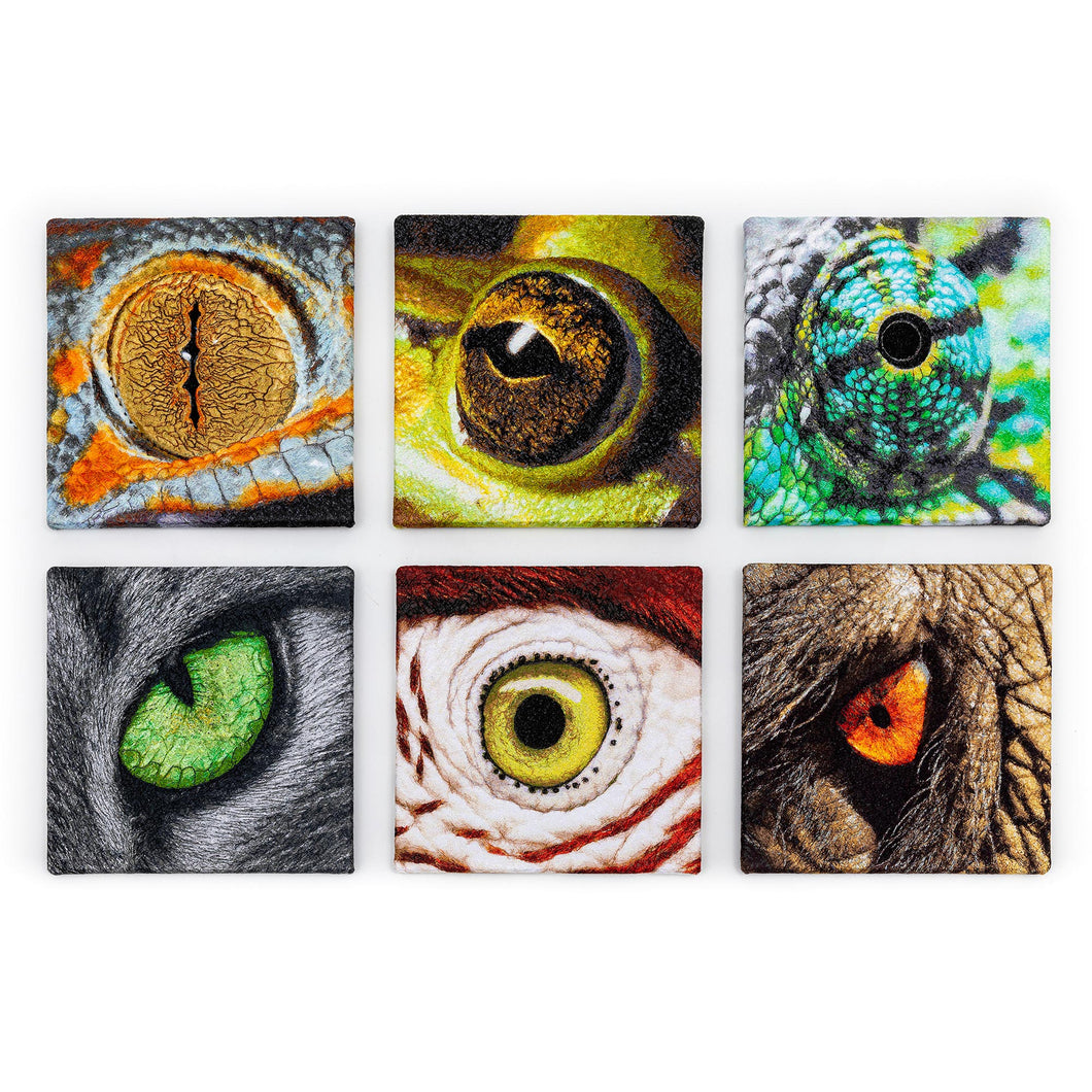 Living Eyes – Set of of 6 embroidered canvases