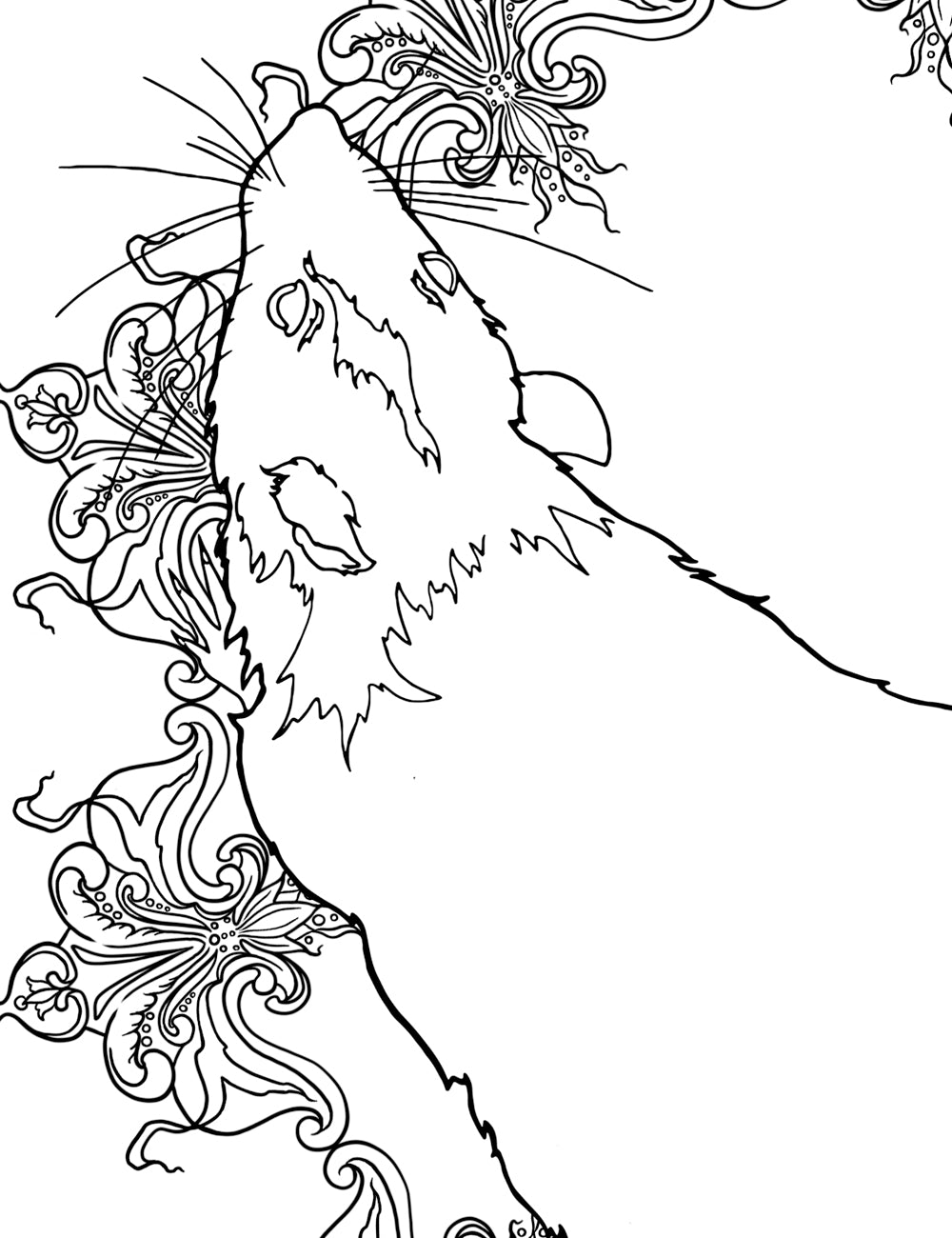 Asylum Coloring Book Page: Sir Edward