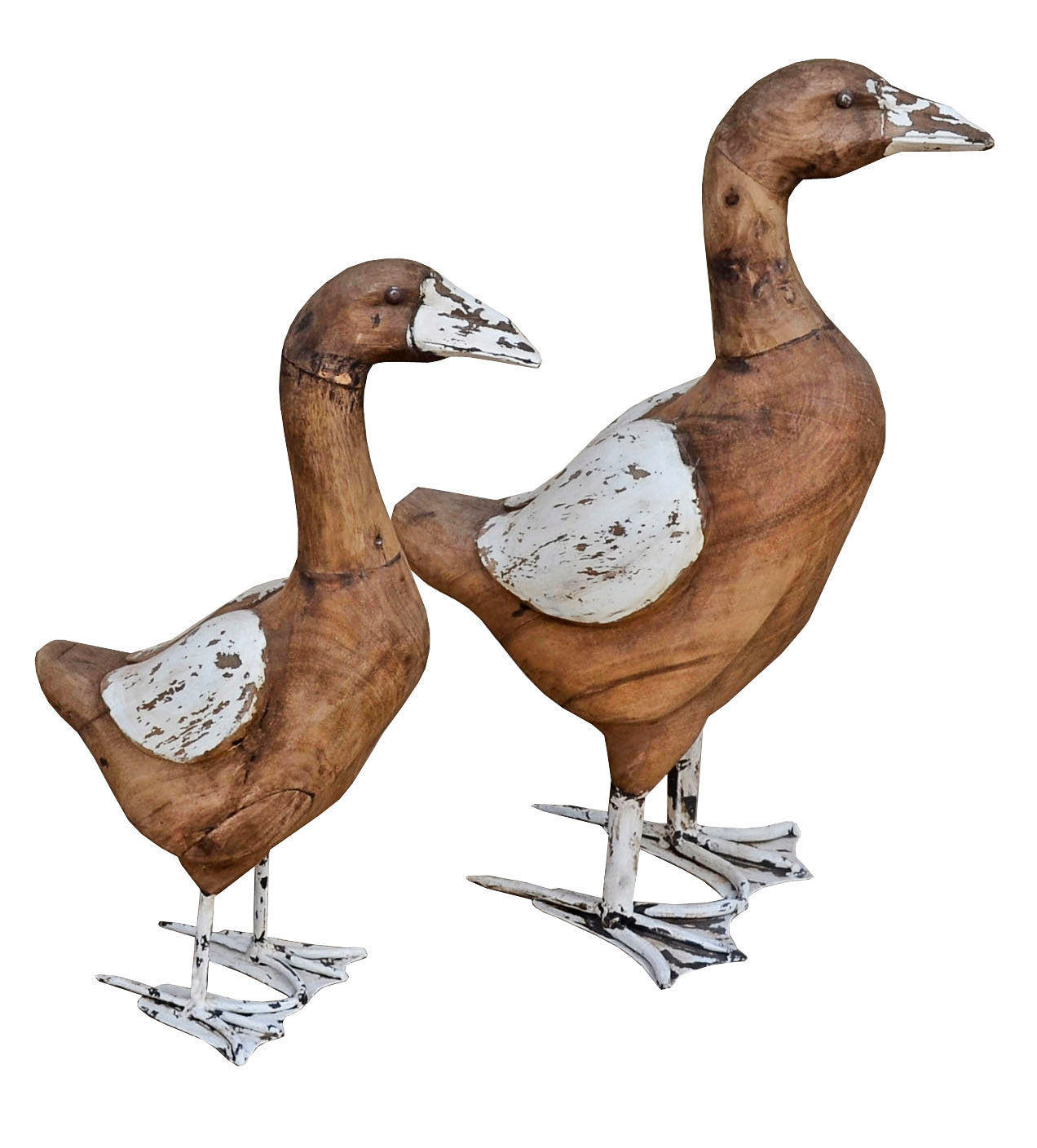 Duck Decor Duo