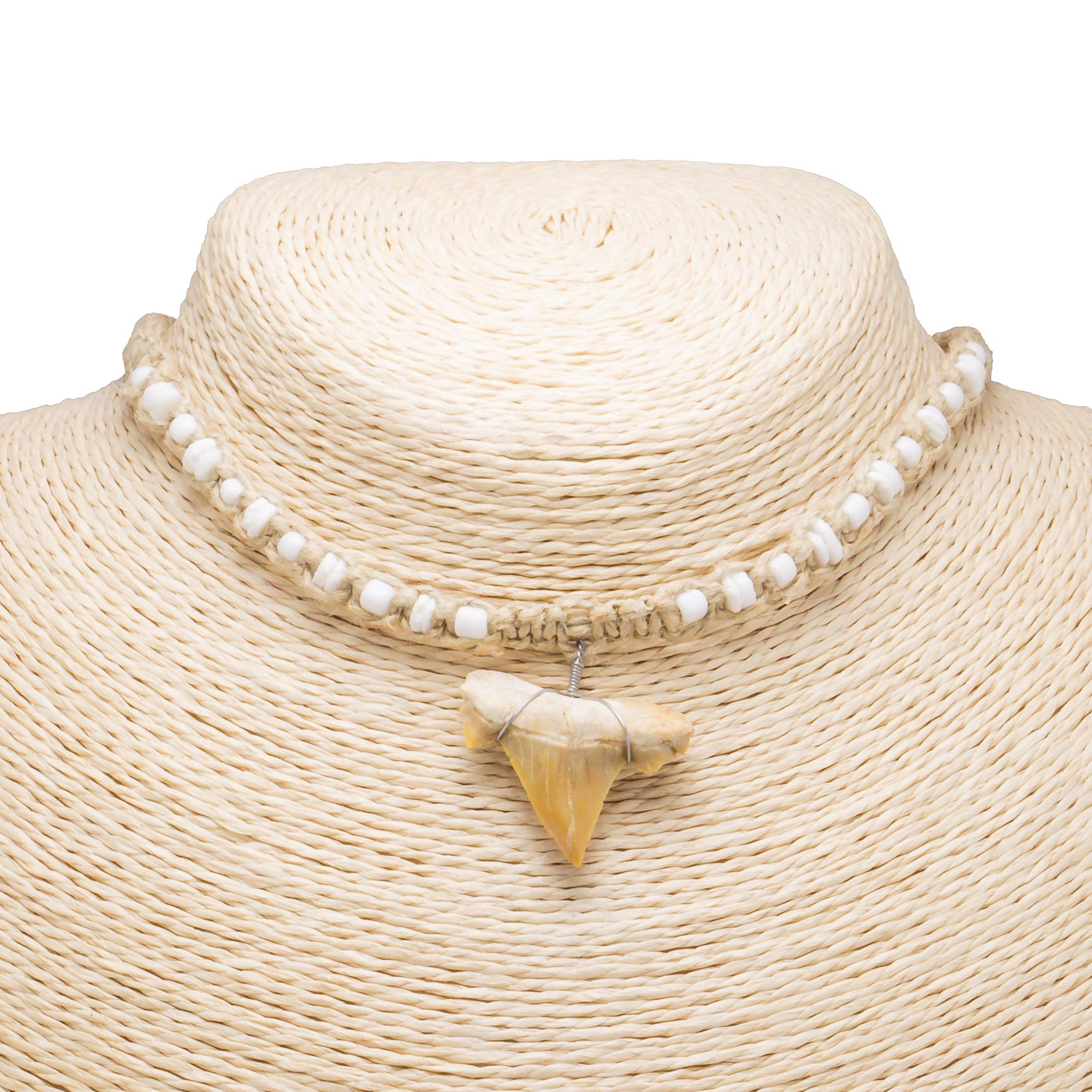 "1""+ Shark Tooth Pendant on Hemp and Puka Shell Beads Necklace"
