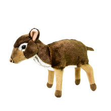 Load image into Gallery viewer, Lesser Mousedeer Plush - 23cm