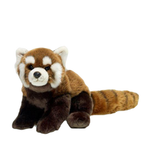 Load image into Gallery viewer, Red Panda Plush - 23cm