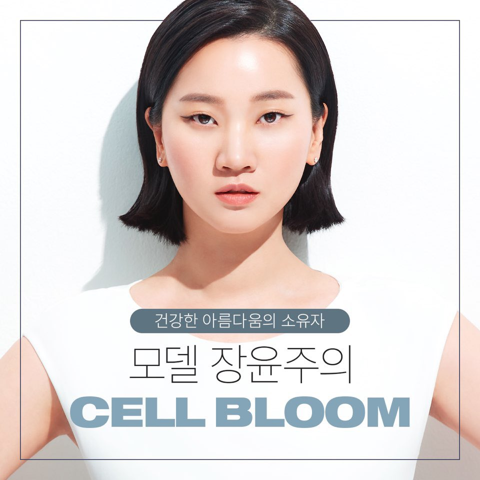 [CELL BLOOM] DRAGON REGENERATE Cream contains Stem Cell Media 50,000ppm I Brightening, Anti-Wrinkle, Hydrating Triple Effects I Leopard Flower 50ml /1.7 fl.oz.