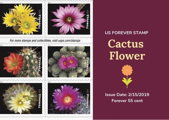 Cactus Flower US Forever Stamp