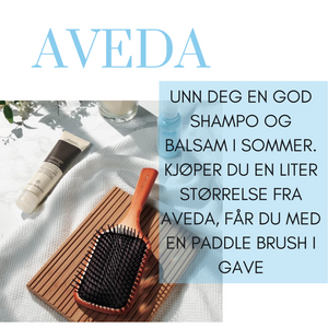 Kjøp Aveda Liter og få Paddle brush i gave!