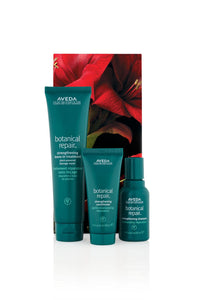 Aveda Botanical Repair Strengthening Haircare Trio