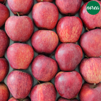 Pesticide-Free Red Apples (10 KG)
