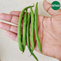 Certified-Organic French Beans Vegetables NOREA 1 KG