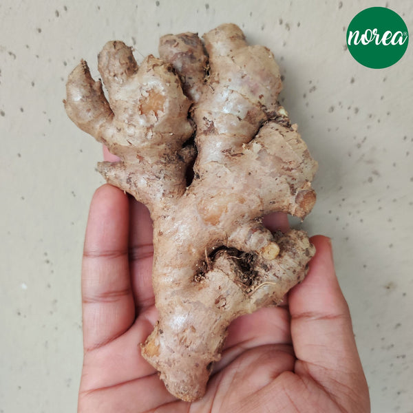 Organic Adarak (ginger) Vegetables NOREA 500g